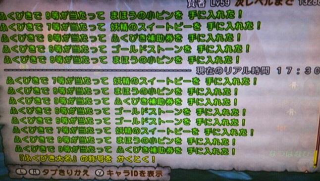 IMG_20130610_171337.jpg