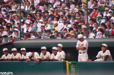 東洋大姫路VS光星学院23