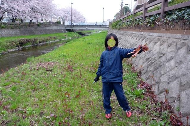 20130331_07.jpg