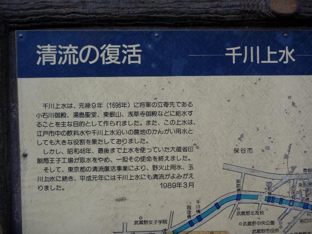 20130503_7.jpg
