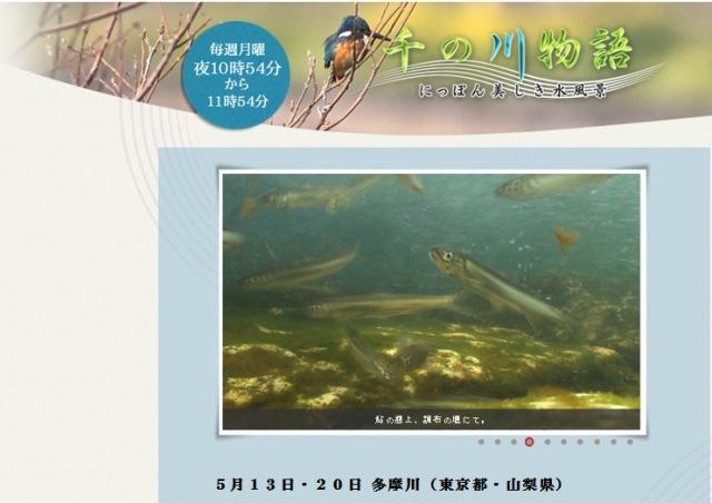 千の川物語_多摩川