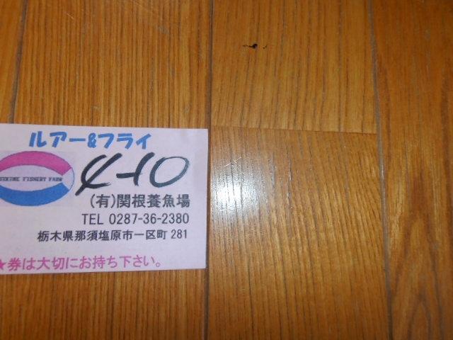 P4110582.jpg