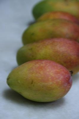 sindoor-mango1.jpg