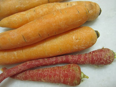 summer-carrots-apr13.jpg