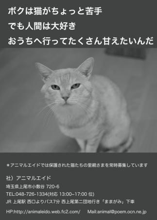 zunzun_Fotor.jpg
