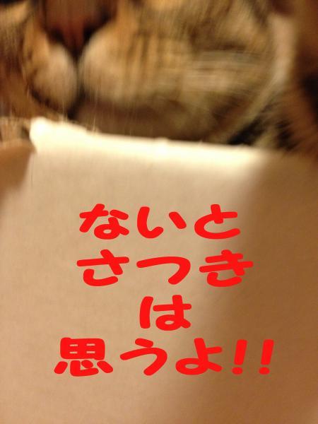 062-1_convert_20140131190721.jpg