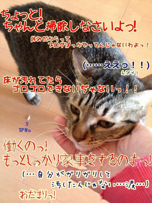 s-01_convert_20140131104002.jpg
