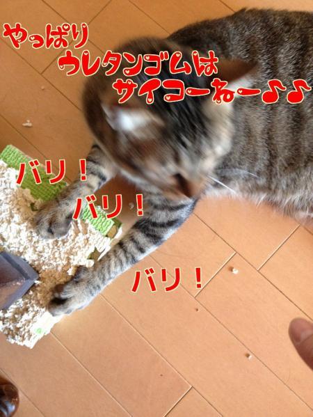 s-04_convert_20140131103807.jpg