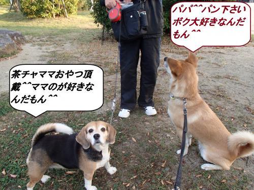 PA045386_convert_20131005092411.jpg