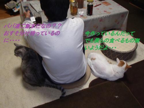 PA255620_convert_20131026073320.jpg