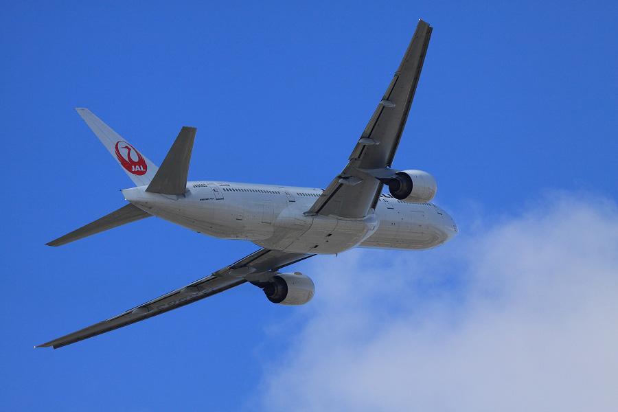 JAL B777-246 / JAL110 (JA8983)@エアフロントオアシス沿道