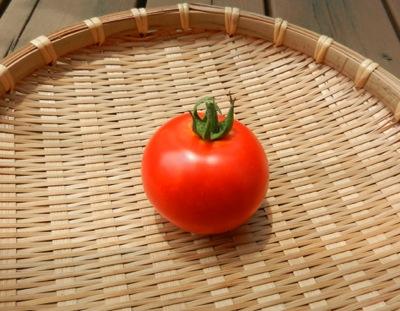 トマト-2