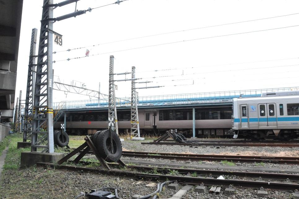 DSC_0015A.jpg