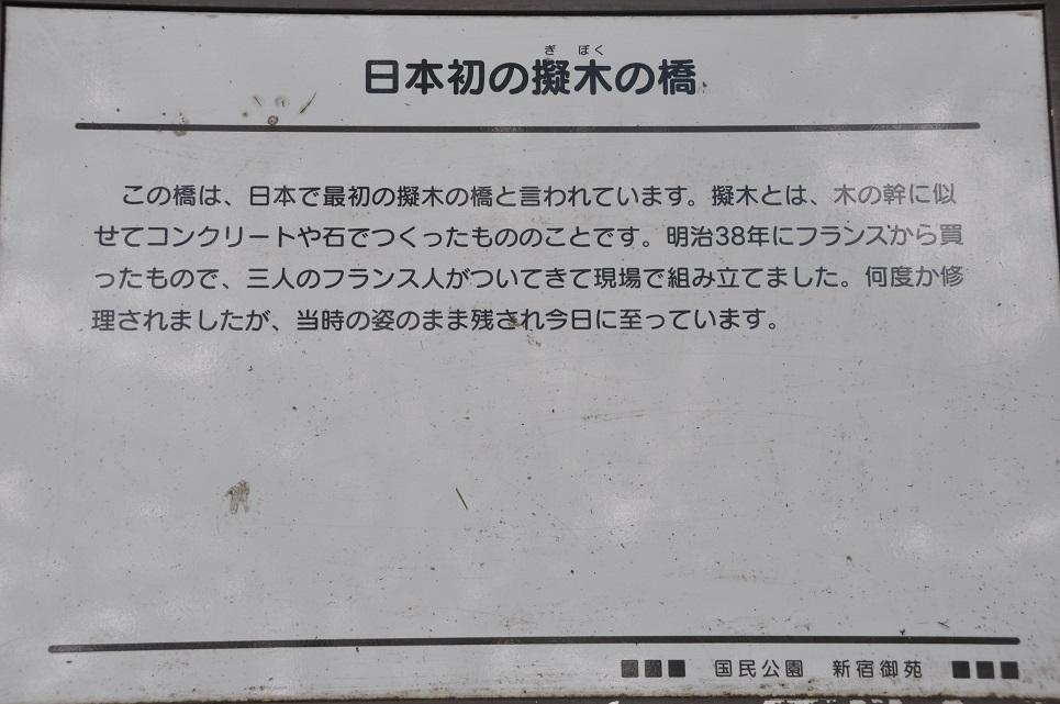 DSC_0309A.jpg