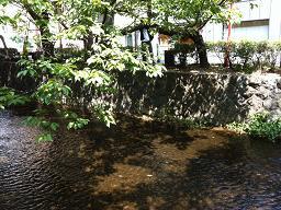 京都の街3