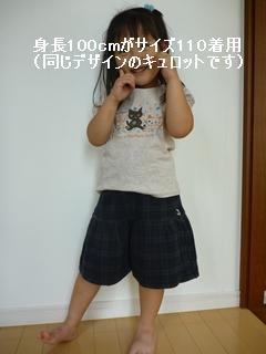 P1040885_R.jpg