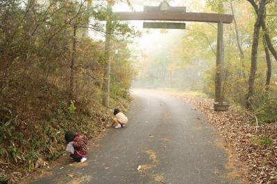 2012.11.03 帝釈峡 166