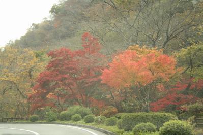 2012.11.03 帝釈峡 347
