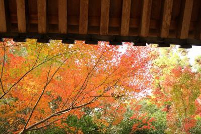 2012.11.09 三滝 013