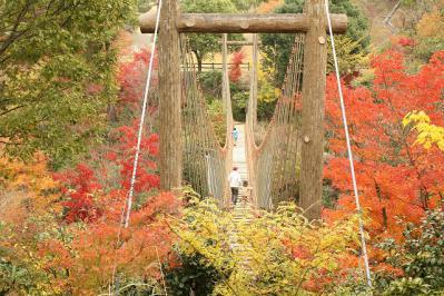 2012.11.10 森林公園 059