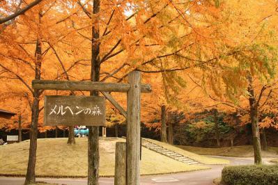 2012.11.10 森林公園 202