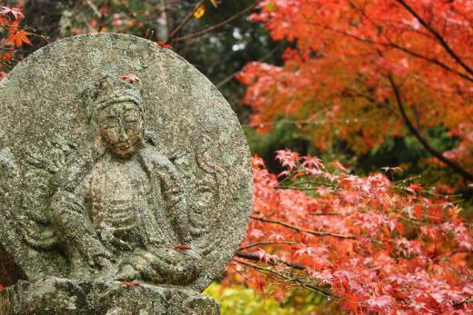 2012.11.17 山口紅葉 038