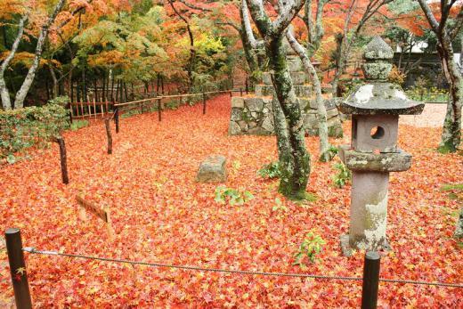 2012.11.17 山口紅葉 026