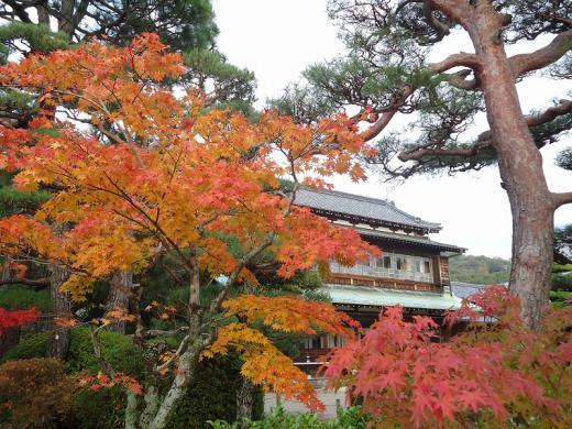 2012.11.17 山口紅葉 181