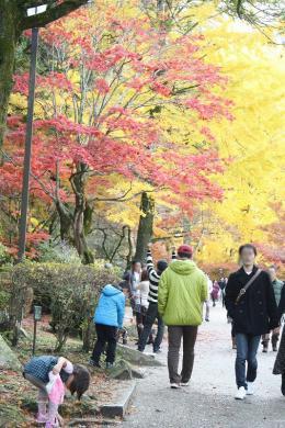 2012.11.18 紅葉谷公園 006