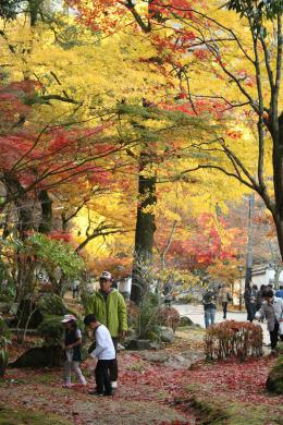 2012.11.18 紅葉谷公園 101