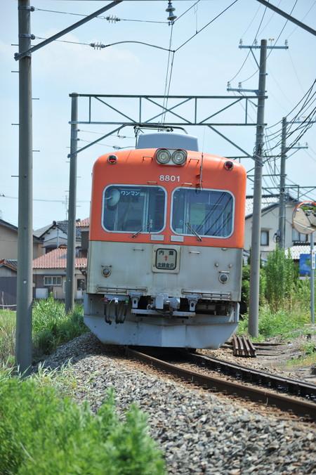 DSC_7021.jpg