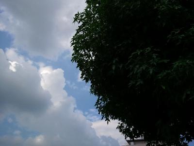 2011-08-27 15 09 49ブログ用