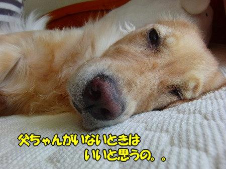 CIMG7584.jpg
