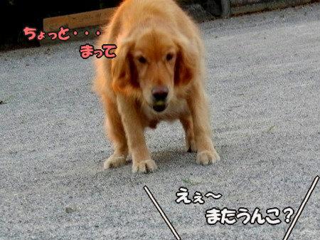 CIMG7601.jpg