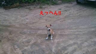 moblog_d3d271f0.jpg