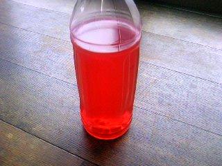 梅ちゃん 紅花染め液