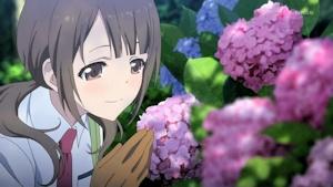 沖田紗羽と紫陽花