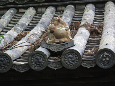 屋根のたぬき