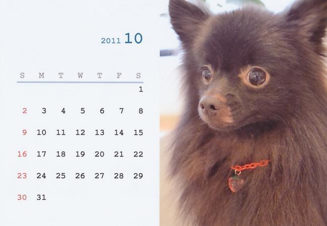 IMG10_convert_20110926224457.jpg