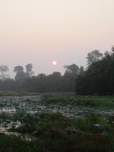 日の出1011