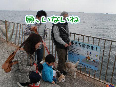 2013・03・23釣り場