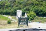 2008・05・18アリス上流1