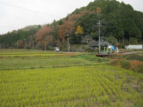 20121128banshuu.jpg