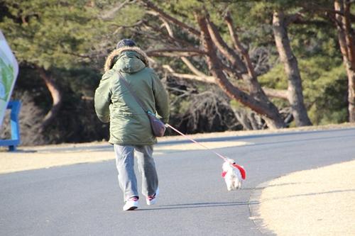 2013 海浜公園散歩 001