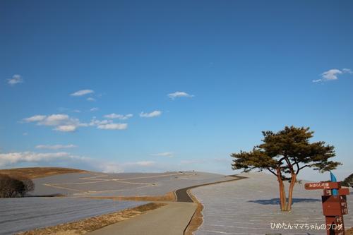 2013 海浜公園散歩 024