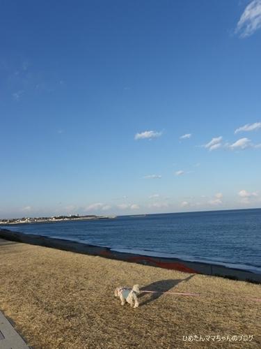 2013 大洗散歩 011