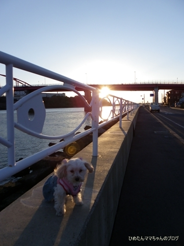 2013 大洗散歩 018