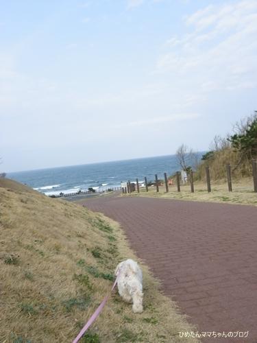 2013 鹿島灘海浜公園 005