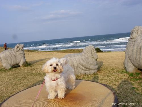2013 鹿島灘海浜公園 008