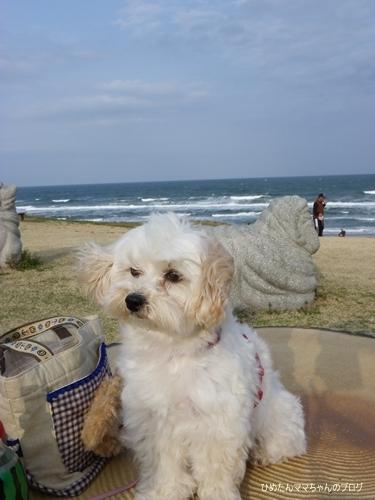 2013 鹿島灘海浜公園 009